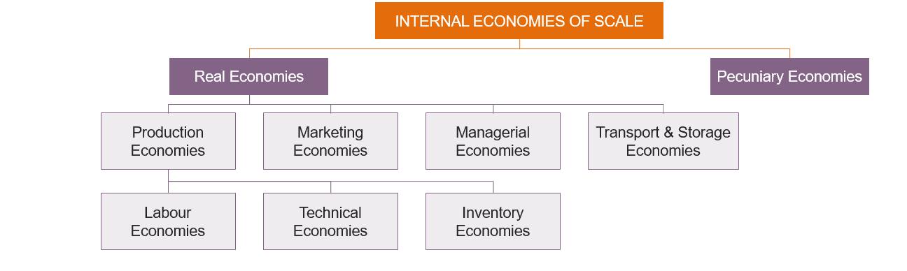 Internal Economies of Scale
