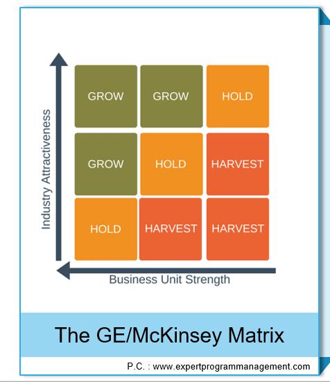 The GEMcKinsey Matrix